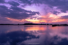 多々良沼の夕日Ⅳ