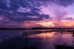 多々良沼の夕日Ⅲ