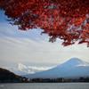 もみじ越しの富士山