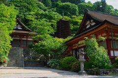 けまりの庭にて~談山神社