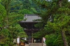 新緑の長谷寺~仁王門