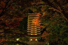 秋の夜に・・・十三重塔