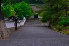 初夏の南禅寺