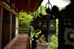新緑の談山神社③