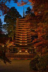秋の夜に・・・十三重塔 2020!