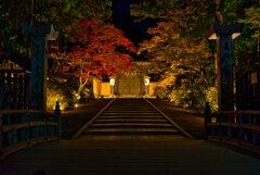 夜明け前の正門~金剛峯寺