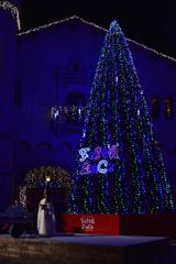 メリークリスマス♪ ①