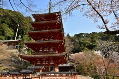 初瀬の春~五重塔