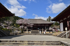 曼荼羅の春~當麻寺