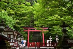 新緑の談山神社②