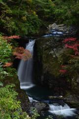 秋~高野大滝①