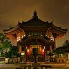 闇夜の南円堂~興福寺