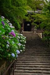 本堂への道~長谷寺