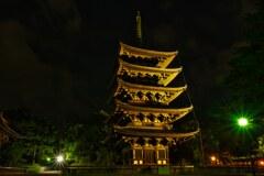 夏の夜 ライトアップの五重塔