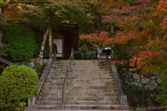 色付く長岳寺