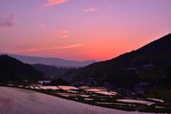 Evening of Hosokawa