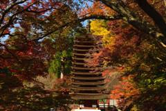 多武峰の秋19~十三重塔②