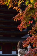 多武峰の秋②