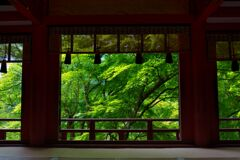 深緑の談山神社~拝殿 〈弐〉