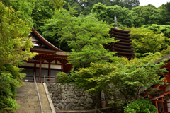新緑の談山神社