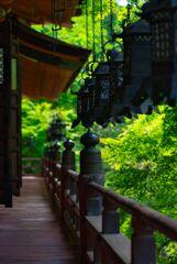 深緑の談山神社~拝殿 〈参〉