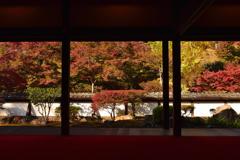 菩提山の秋