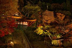 秋の夜の談山神社