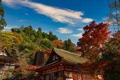 多武峰 色づく秋