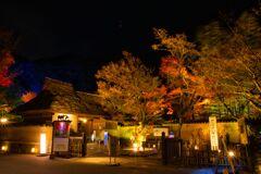 嵐山花灯路~宝厳院