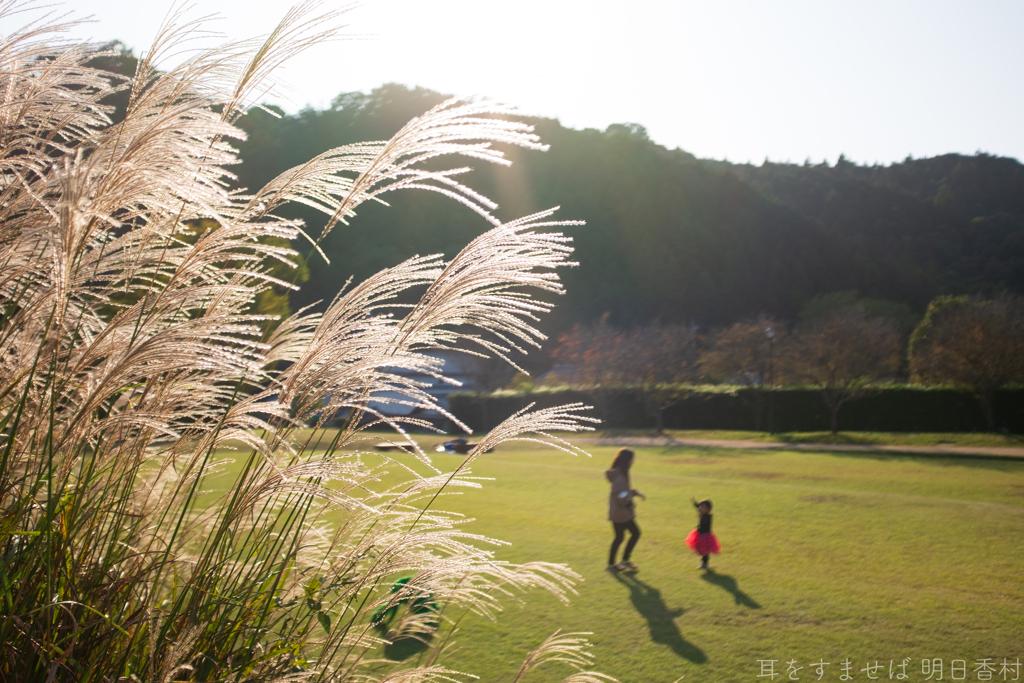 明日香村 大字島庄( 国営飛鳥歴史公園 石舞台地区 )