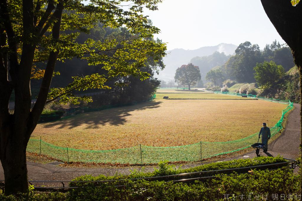 明日香村 大字豊浦( 国営飛鳥歴史公園 高松塚周辺地区 )