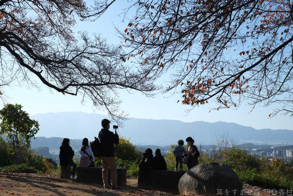 明日香村 大字豊浦( 国営飛鳥歴史公園 甘樫丘地区 )