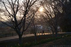 明日香村 大字平田( 国営飛鳥歴史公園 高松塚周辺地区 )
