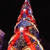 今年で最後のクリスマス