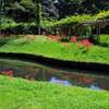 彼岸花の咲く庭園