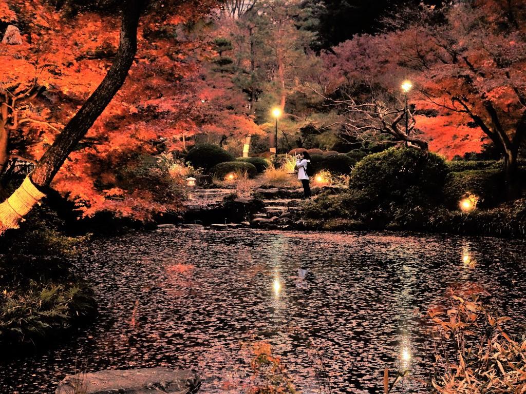 早稲田燈幻郷