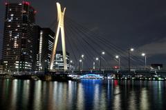スカイツリーと隅田川に掛かる橋