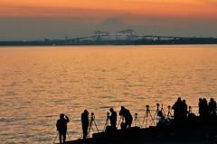 舞浜のカメラマン達