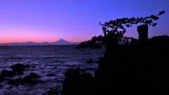 千貫松と富士山