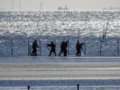 海で働く人々