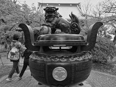 豪徳寺の香炉と獅子