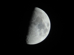 昨日の月(月齢8.5)