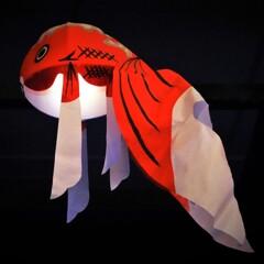 柳井金魚提灯