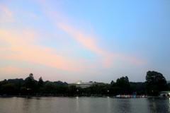 不忍池の夕景