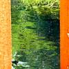 柱間の緑彩