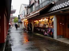 浅草寺新春風景 灯りの映り込み