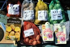 ジャガイモの種5種6.3kg