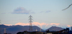 遠くにアルプスの山々が
