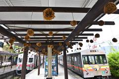 コケ玉の駅(3)