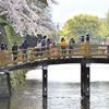 和歌山城寸景(7)